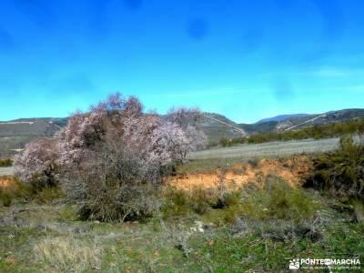 Cárcavas Alpedrete de la Sierra y Cerro Negro; viajes en mayo senderismo en ronda la casita del bos